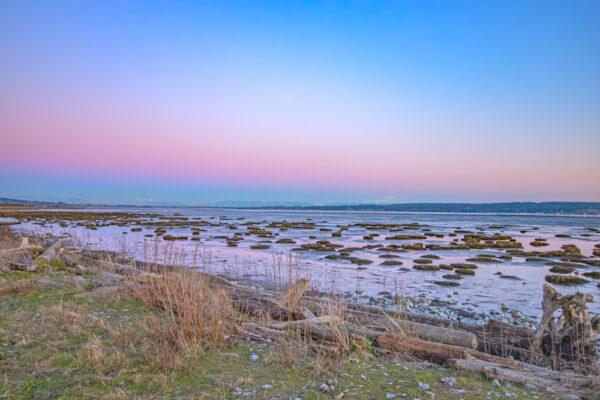 Mud Bay Winter Sky
