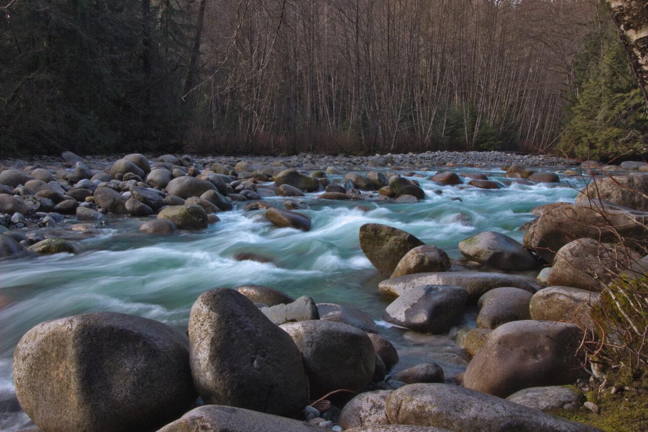 River in Lynn Valley