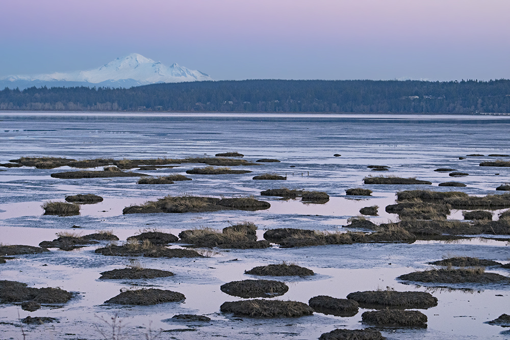 Mud Bay Sunset, January 22, 2021